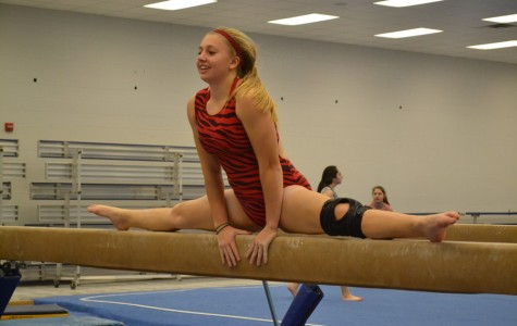 Behind the beams: Haslett gymnastics carried by seniors and coaches